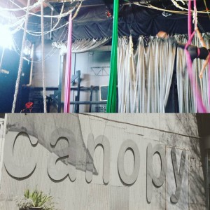 Canopy_Athens